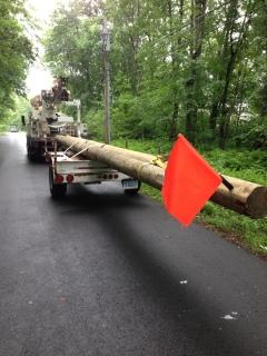 New utility pole