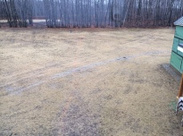 Backyard after seeding and haying. You can see the septic area behind the stand of trees to the back left.